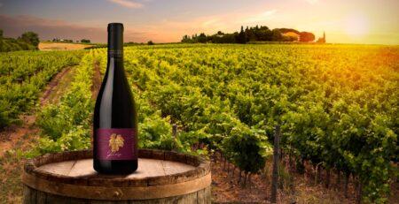 Garrafa de vinho Las Veletas