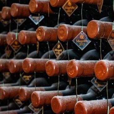 Armazenamento de vinhos