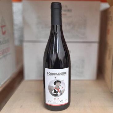 Damien Martin Bourgogne Pinot Noir 2019