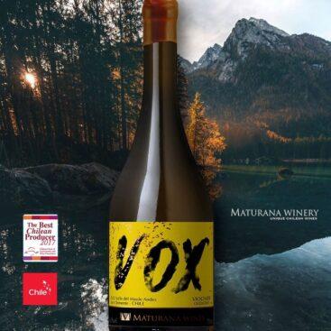Viaje pelos sabores do VOX, vinho exótico produzido no Chile